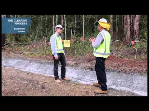 Vegetation Clearing  Best Practice: examples from  road construction