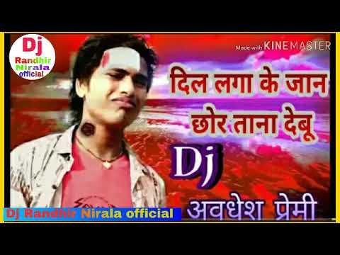 Dil Laga Ke Jan Chhor Tana Debu    Full Dj Song  Avdhesh Premi Rimix By Dj Randhir Nirala Kharka