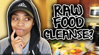 GROCERY HAUL | SHARING WHAT I GOT FOR MY RAW FOOD CLEANSE!