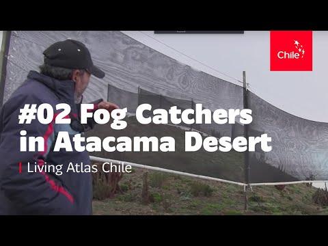 #02 Fog Catchers in Atacama Desert - Living Atlas Chile