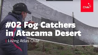 #02 Fog Catchers in Atacama Desert - Living Atlas Chile