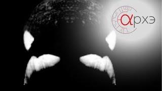 """Встреча с Марком Палмером, научным консультантом фильм """"Черный плавник"""""""