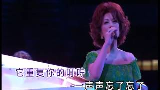 不了情 karaoke