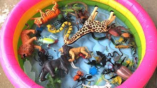 Safari Toys And Bugs Insects Toy Lot In Pool Fun/Children Learning Fun/Water play