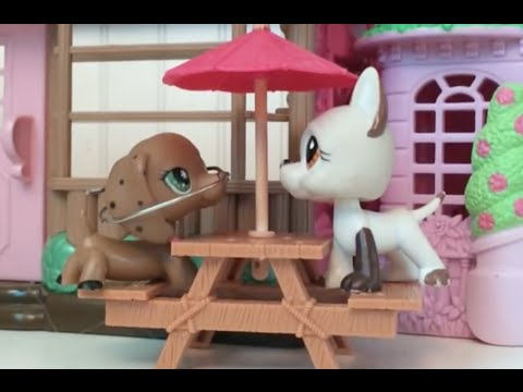 Lps: My Hopeless Romance Episode 1 {Hope Williams}