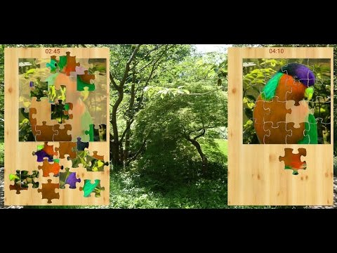 Bird Puzzle - Vogel Puzzel Video 2013 / App 12/2016