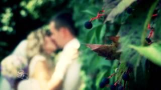 Бумажная годовщина свадьбы Бикетовых