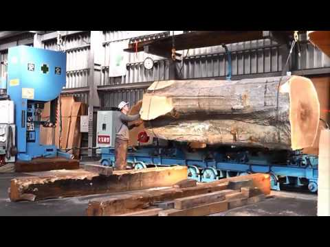 Inside a modern sawmill in Japan - Visit wood processing plants