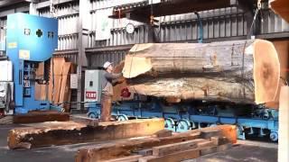 Inside a modern sawmill in Japan - Visit wood processing plants
