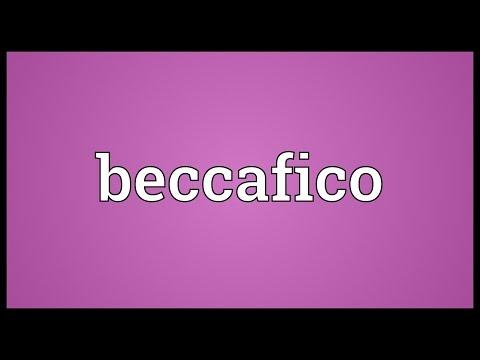Header of beccafico