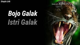 Bojo Galak _ Istri Galak ( Lagu Jawa & Terjemahan Indo )