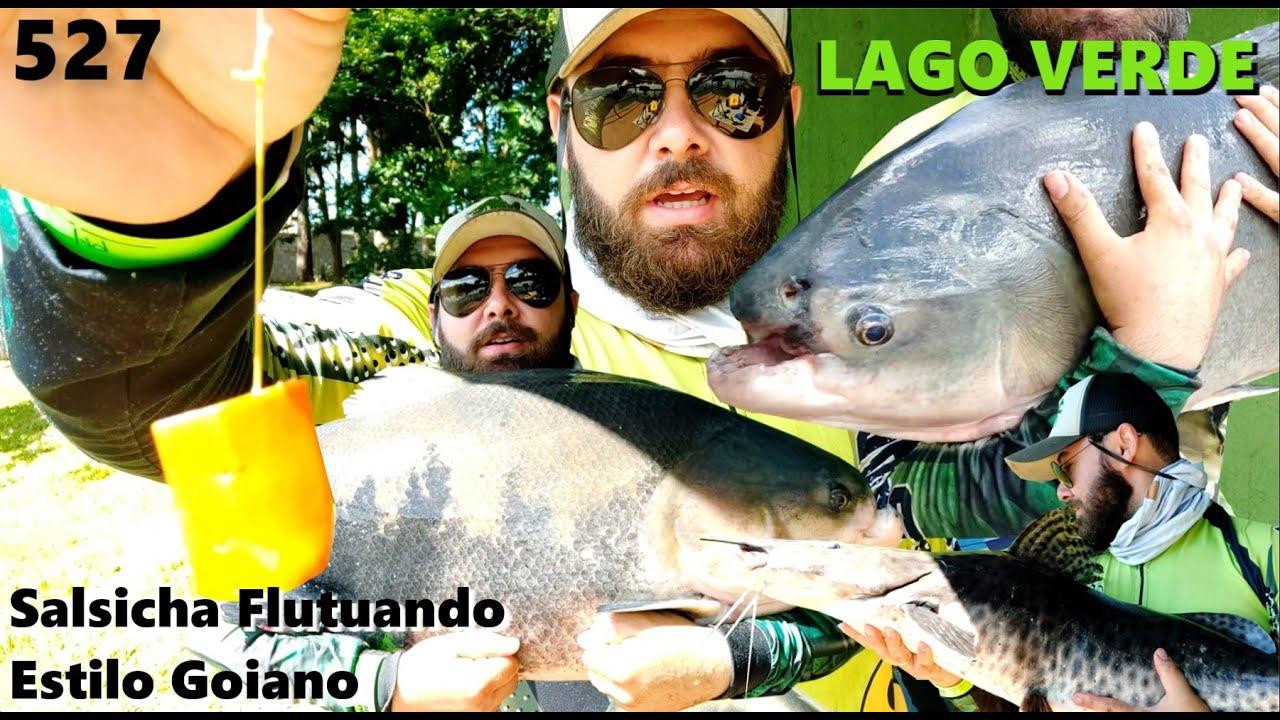 Lago Verde - Pescaria no estilo goiano e ótimos resultados - Fishingtur na TV 527