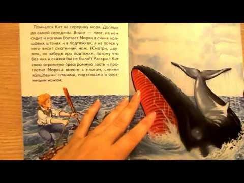 Акулы и все об акулах Уникальные свойства организма акул