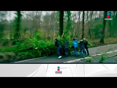 "Tormenta ""Friederike"" azota a Europa | Noticias con Francisco Zea"