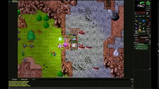 REVE DBNS Ree-Attack (Zielony Jaracz/Floki)