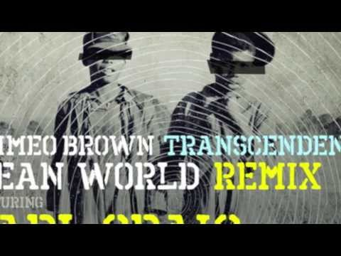 'Mean World' Remix Feat. Carl Craig & Q-Tip