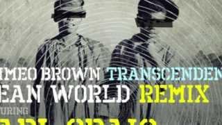 'Mean World' Remix Feat. Carl Craig & Q-Tip