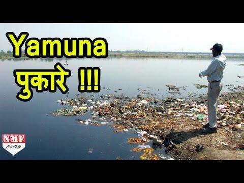 Modi Ji करो कल्याण , Yamuna मांगे जीवनदान !!!
