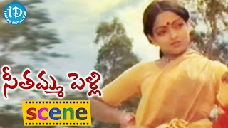 Seethamma Pelli Movie Scenes - Mohan Babu Marries Mucherla Aruna || Murali Mohan || Revathi