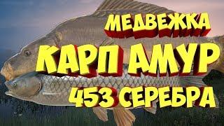 Русская рыбалка 4 КАРП АМУР Медвежье озеро РР4 Алексей Майоров