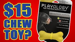 Is this chew toy worth $15? | DOG TOY REVIEWS | Playology Dual Layer Bone Dog Toy