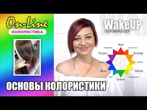 Техника окрашивания видео уроки для парикмахеров