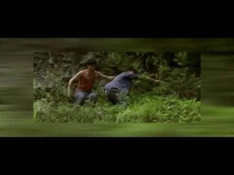présentation-du-film-balzac-et-la-petite-tailleuse-chinoise