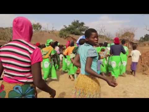 GIZ: The Food and Nutrition Security Programme in Malawi. 2017