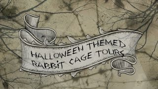 Budgetbunny: Halloween Themed Rabbit Cage Tours | October 2014