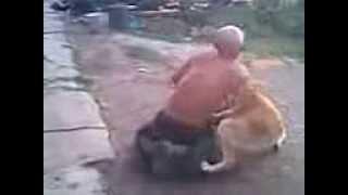Собака дрючит мужика (+100500)