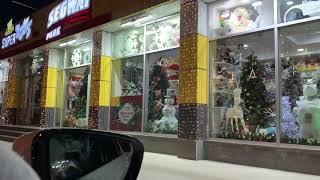 Шоппинг в магазине игрушек Celine