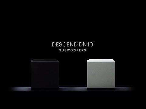 Definitive Technology Descend DN10 Subwoofer