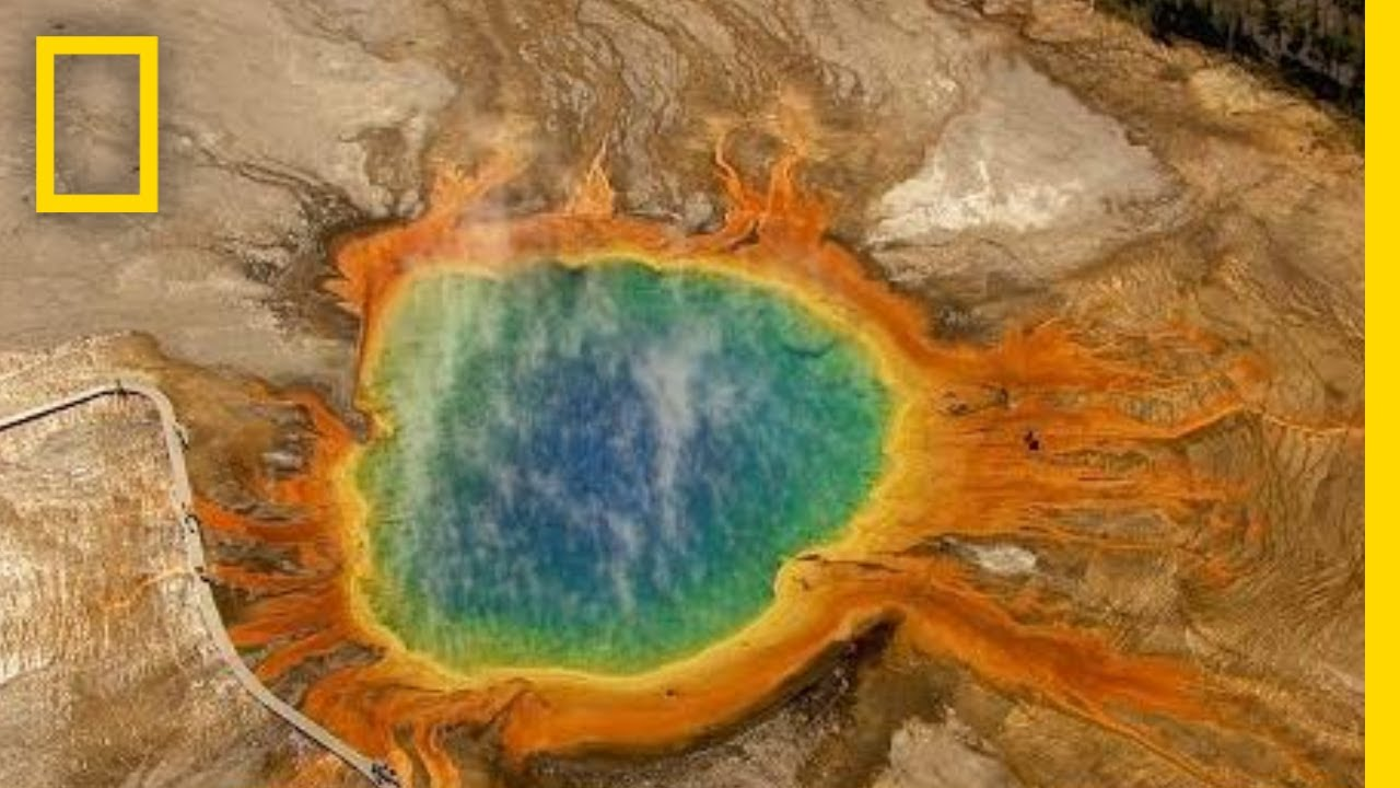 Download Five Must-See Attractions in Yellowstone | National Geographic