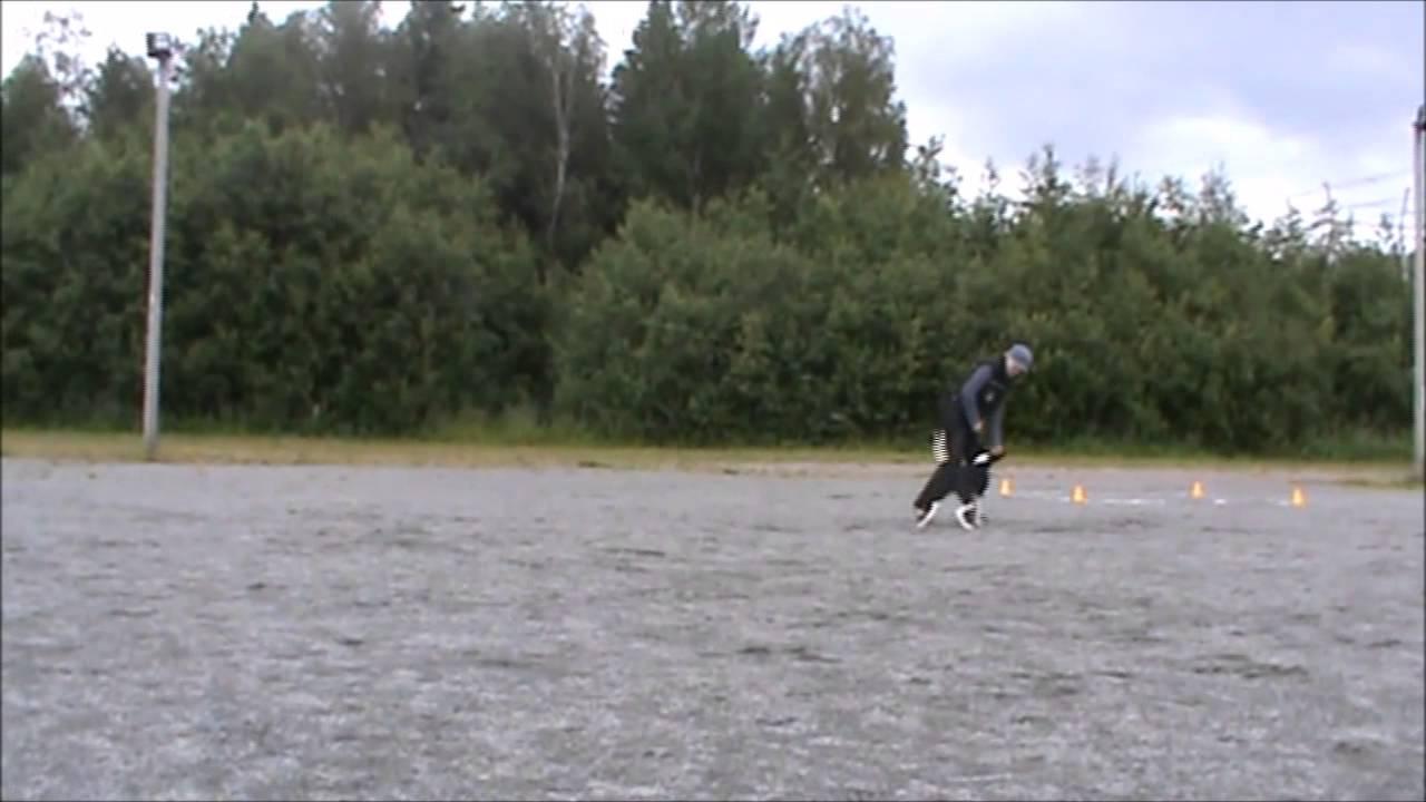Kikka Kolmonen