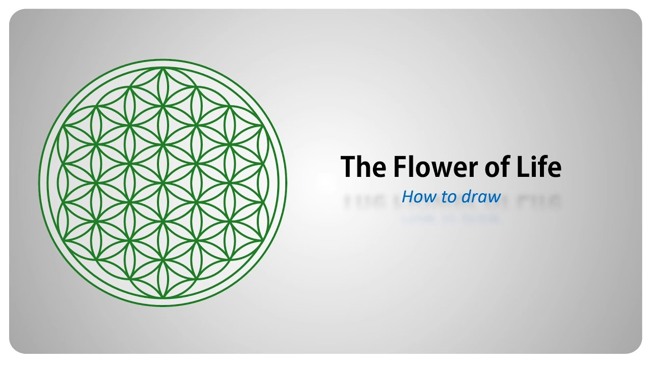 How to draw the flower of life sacred geometry step by for How to draw the flower of life step by step