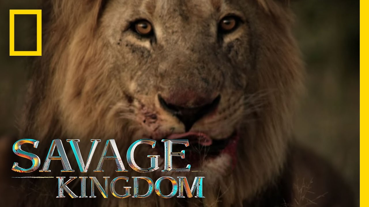 Download Sekekama: The Colossal King   Savage Kingdom