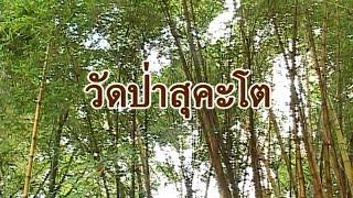 วัดป่าสุคะโต 2553