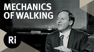 The Mathematics of Walking and Gait - Christmas Lectures with Philip Morrison