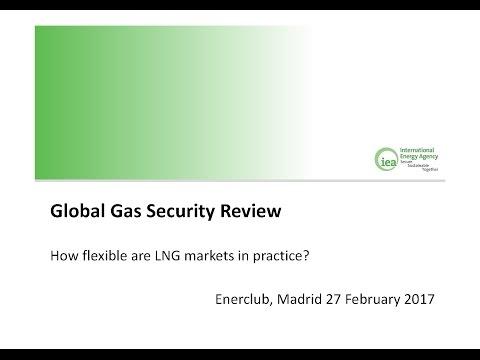 Presentación del estudio: Global Gas Security Review. Febrero 2016