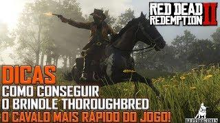 Red Dead Redemption 2 -  DICAS - COMO CONSEGUIR O BRINDLE THOROUGHBRED O CAVALO MAIS RÁPIDO DO JOGO!