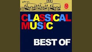 Symphonie No. 9 in D Minor, Op. 125: I. Allegro ma non troppo, un poco maestoso