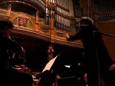 Princeton University Orchestra Budapest 2007 Michael Pratt