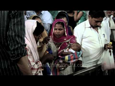 At Dargah Pir Baba Hazrat Ali Elahi Bakhsh ji