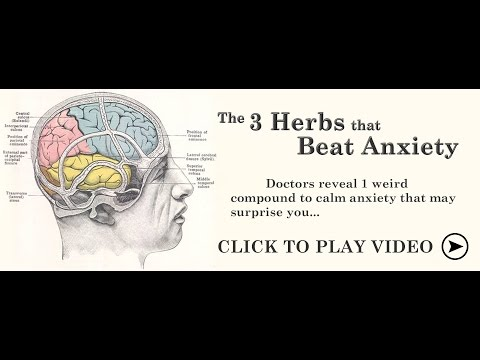 The 3 Herbs that Beat Anxiety