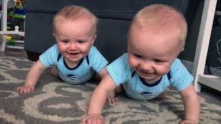 Les vidéos les plus drôles et mignonnes que vous verrez aujourd'hui! - Bébés jumeaux