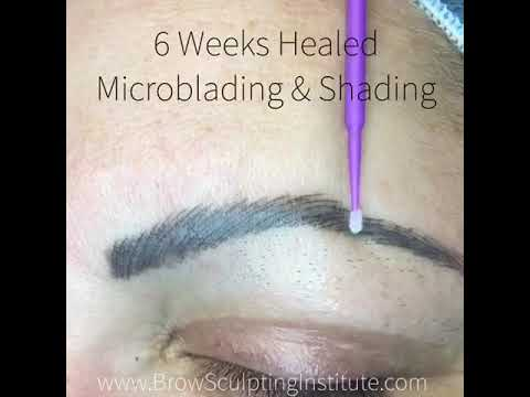 Microblading Healed Results | Brow & Beauty Institute | Orlando | Kissimmee