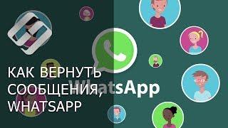 Как восстановить историю чатов, контакты, сообщения и файлы в WhatsApp 💬📁⚕️