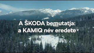 KAMIQ naming story