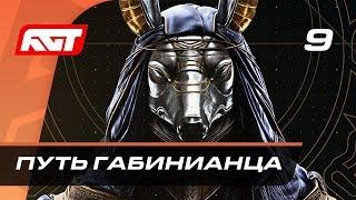 Прохождение Assassin's Creed Origins — Часть 9: Путь габинианца