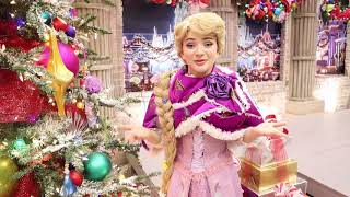 Happy Holidays from Rapunzel!